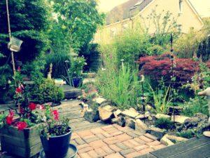 ダビッド講師の父親の家の庭